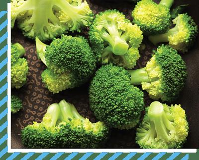 broccoli-steam-E3